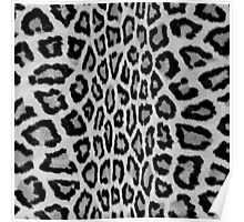 Hipster abstract black white animal print  Poster