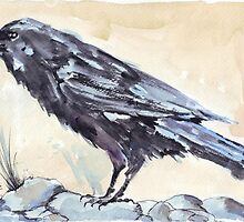 A Crow's Dream... by Maree  Clarkson
