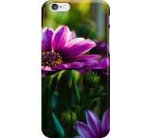 Summer is Coming iPhone Case/Skin