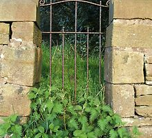 Nettle Time Gate  by charlottelisa1
