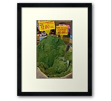 green spice- Istanbul Framed Print