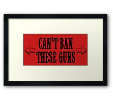 cant ban these guns Framed Print