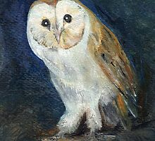 Barn Owl by Carol Rowland