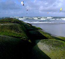 windsurfers - cottontree beach by oskaclothing