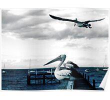 Grey sky flight Poster