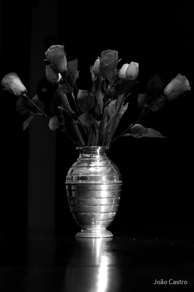 Flowers b&w 0602 by João Castro