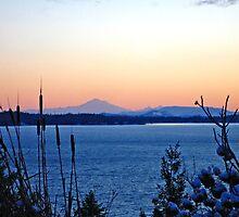 Mount Baker Sunset Silhouette by tarenjane