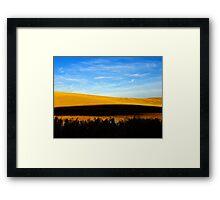 Prairie Gold Framed Print
