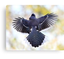 Blue Wingspan On Pastel Background Canvas Print