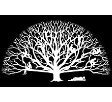 Tree Dwelling White Silhouette Photographic Print