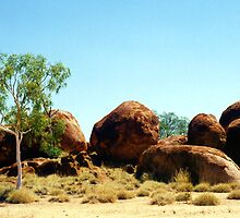 The Devil's Marbles by Michael John