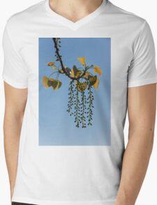 Springtime Jewelry Mens V-Neck T-Shirt