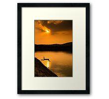 summer swim Framed Print