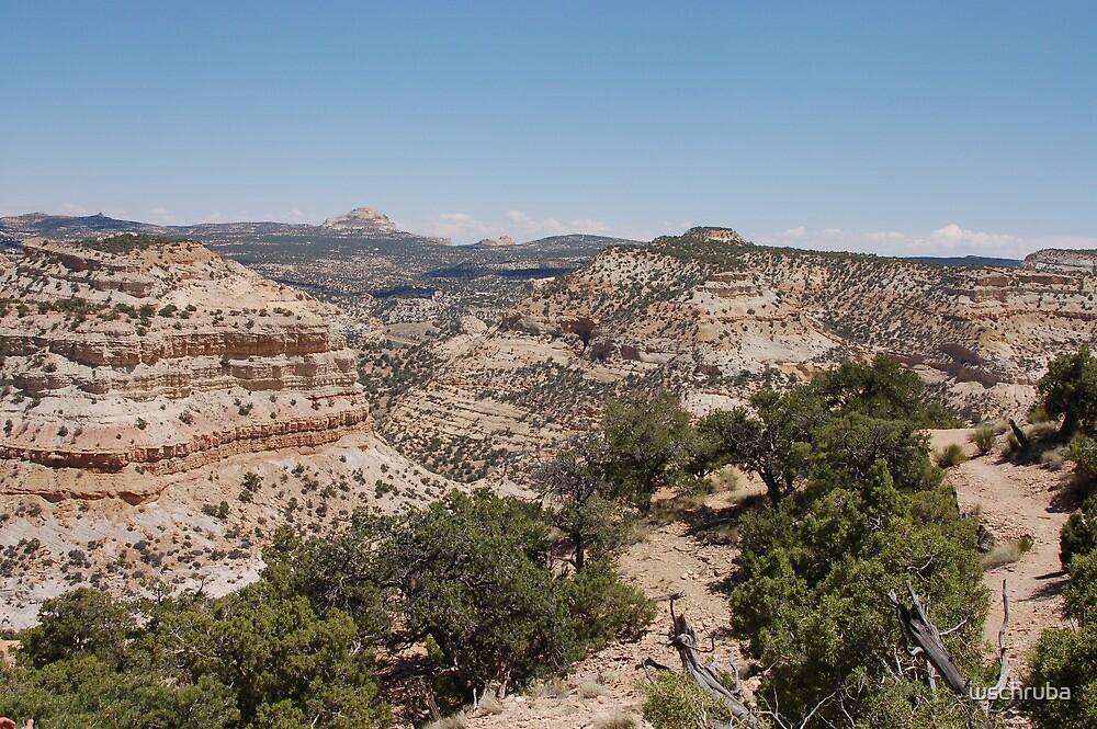 Canyon View - Utah by wschruba