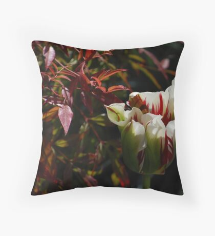 Tulip by available light Throw Pillow