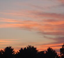 Early Morning Sunrise - Princeton, New Jersey by wschruba