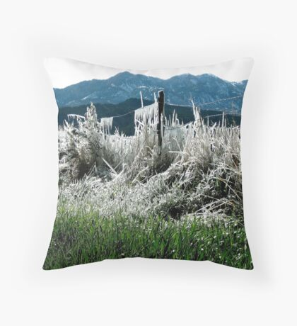 Ice Sculpture in the North Forty  Throw Pillow