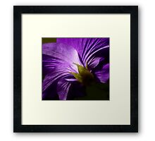 The Passion of Purple Framed Print