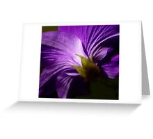 The Passion of Purple Greeting Card