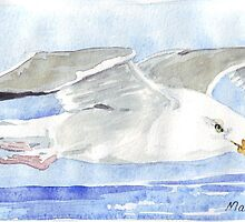 Jonathan Seagull by Maree  Clarkson