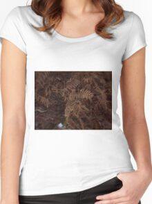 Ferns In Winter Women's Fitted Scoop T-Shirt