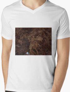 Ferns In Winter Mens V-Neck T-Shirt