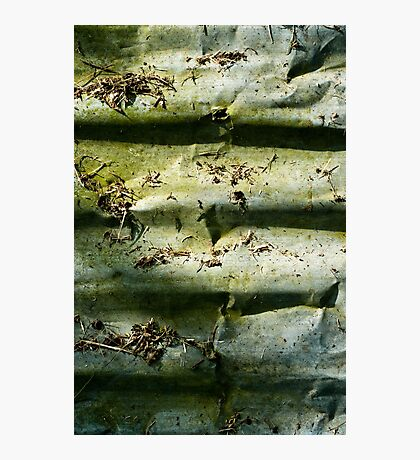 Corrugation Photographic Print