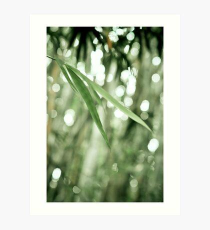 ~ bamboo leaves ~ Art Print