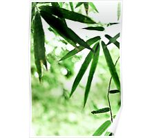 ~ bamboo leaves & it's sky ~ Poster