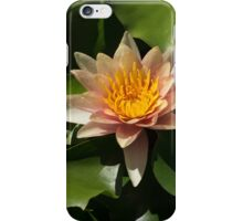 Exotic Colors - A Soft Coral Waterlily iPhone Case/Skin