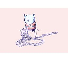 Love Cat Photographic Print