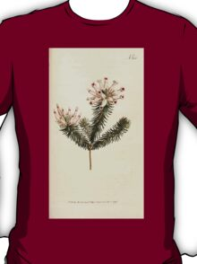The Botanical magazine, or, Flower garden displayed by William Curtis V9 V10 1795 1796 0136 Erica Ventricosa Porcelain Heath T-Shirt