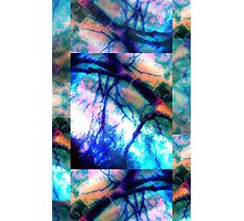 Abstract Composition – May 13, 2010  Photographic Print