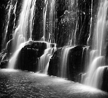 Guide Falls in monochrome, in Tasmania by Elana Bailey
