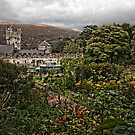 Glenveagh Castle country garden. by Peter Ellison