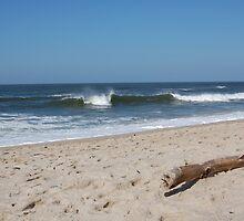 Waves in Spring by Bredenkamp