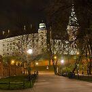 Wawel pano. by BrainCandy