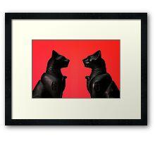 Cats Framed Print