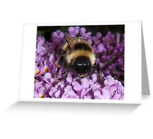 The Bumble Greeting Card