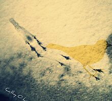 Bird tracks in snow by Cathy O. Lewis