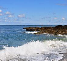 Penmon Point, Penmon Peninsula, Isle of Anglesey, Wales, UK  by vkirbys