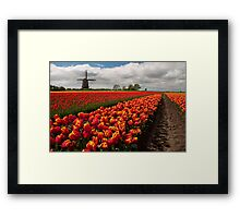 The Colour of Spring Framed Print