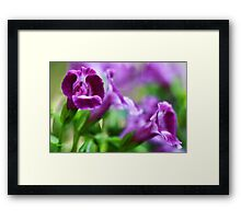 -Greeting A New Day Framed Print
