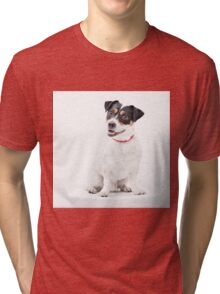 Character(full) Tri-blend T-Shirt