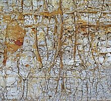 Wall of Clay by Eileen McVey