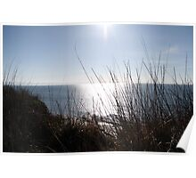 Sewerby Cliffs looking down Poster