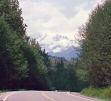 The Road to Mt.Baker National Forest... by EvaMarie Cannon
