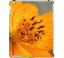 Close macro iPad Case/Skin