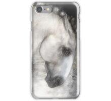 Equus iPhone Case/Skin