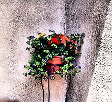 The Corner Flower Pot by Jimmy Ostgard